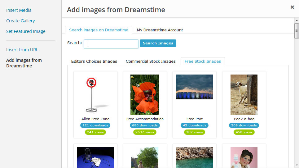Dreamstime WordPress Plugin Interface