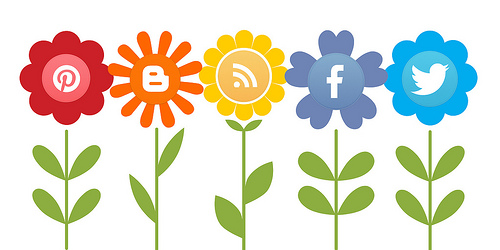 growing social media through marketing